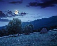 Стог сена около деревьев на луге горного склона в горах на ноче Стоковые Фотографии RF