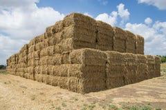 Стог сена пшеницы Стоковые Фото