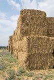 Стог сена пшеницы Стоковое Фото