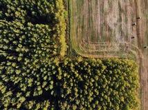 Стог сена, фотографии трутня Стоковые Изображения RF