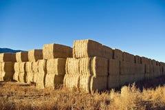 стог сена Стоковые Изображения RF