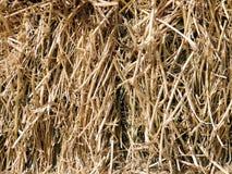стог сена Стоковая Фотография