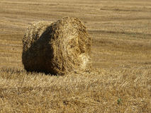 стог сена Стоковое фото RF