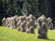 Стог сена Стоковое Фото
