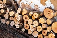 Стог спиленный швырком Куча прерванной древесины стоковые фотографии rf