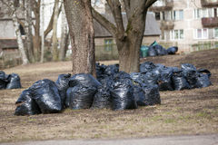 Стог сумок отброса для принимает вне очистите вверх парк города весной и осень Стоковое Изображение