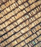 Стог текстуры деревянных журналов для предпосылки Стоковое фото RF