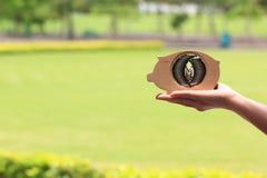 Стог удерживания руки женщины денег монеток в древесине копилки на естественной зеленой концепции предпосылки, вклада и дела стоковое изображение rf
