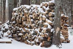 Стог швырка в снеге Стоковые Изображения