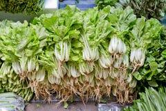 Стог pakchoi овощей зеленого в рынке Стоковые Изображения RF