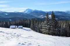 Стойка деревьев Snowy на лужайке Высокие горы покрыты с снегом Старая стойка хат в долинах холодная зима дня Стоковое Изображение RF