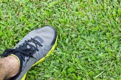 Стойка идущего ботинка человека на траве Стоковое Изображение RF