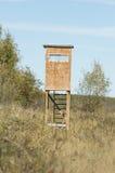 Стойка оленей в лесе Минесоты Стоковое Изображение RF
