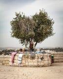 Стойка сувенира Иерусалим Стоковая Фотография RF