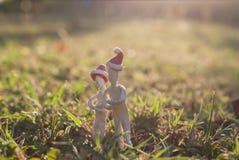 Стойка 2 человек на траве Стоковые Фото
