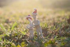 Стойка 2 человек на траве Стоковая Фотография