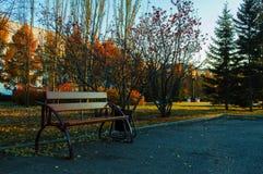 Стойки деревянной скамьи в парке осени Стоковая Фотография RF