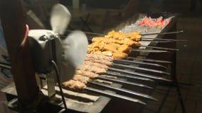 Стойл приготовления пищи kebab барбекю обочины сток-видео