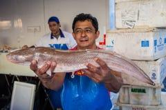 Стойл рыб Стоковая Фотография