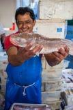 Стойл рыб Стоковое Изображение RF