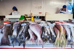Стойл рыб Стоковые Фотографии RF