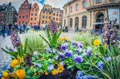 Стокгольм, Швеция - 16-ое мая 2016: Старый городок в Стокгольме gamla stan рыбий глаз перспективы искажения стоковое изображение rf