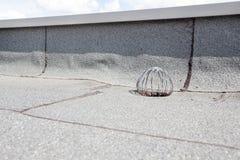 Сток плоской крыши Стоковые Изображения RF