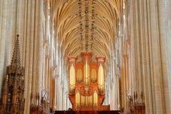 Столбцы и сводчатая крыша собора осмотренного от пресвитерия с органом на заднем плане Стоковая Фотография RF