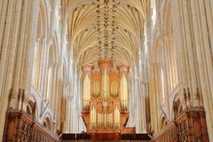 Столбцы и сводчатая крыша собора осмотренного от пресвитерия с органом на заднем плане Стоковые Фотографии RF
