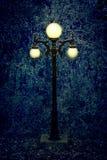 Столб лампы в середине древесин, на скучный и скучный день стоковая фотография rf