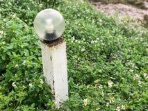 Столб лампы и зеленая трава Стоковая Фотография RF