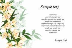 столб цветка карточки Стоковое Изображение