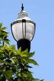 столб 2 светильников Стоковые Фотографии RF