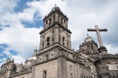 столичный житель Мексика города собора стоковые фото