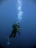 стоп скуба безопасности водолазов подводный Стоковое Фото