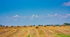 сторновка поля bale круглая Стоковая Фотография RF
