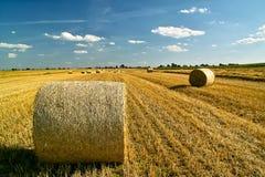 сторновка поля bales Стоковая Фотография