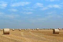 сторновка поля bales Стоковое Изображение
