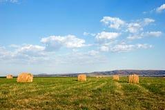 сторновка поля bales Стоковые Фото