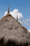 сторновка риса Стоковое Изображение