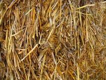 сторновка сена предпосылки Стоковые Изображения RF