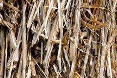 сторновка сена предпосылки Стоковые Фотографии RF