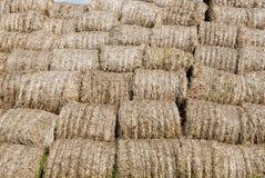 сторновка сена предпосылки Стоковое Изображение