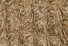 сторновка сена предпосылки Стоковое Фото