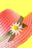 сторновка шлема розовая Стоковое фото RF