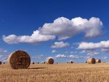 сторновка bales круглая Стоковые Фотографии RF