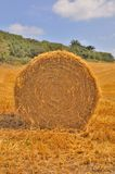 сторновка bales круглая Стоковые Изображения