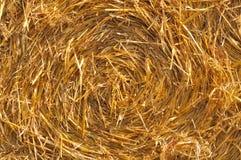 сторновка bales круглая Стоковые Изображения RF