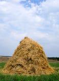 сторновка haystack сена Стоковое фото RF