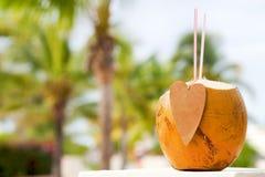 сторновки кокоса коктеила выпивая стоковые изображения